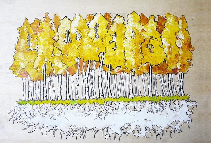 aspen_forest courtesy of https://zelenoye.tumblr.com/